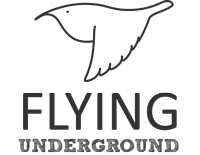 Flying Underground Logo